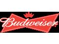 Budweiser Beer Gift Pack
