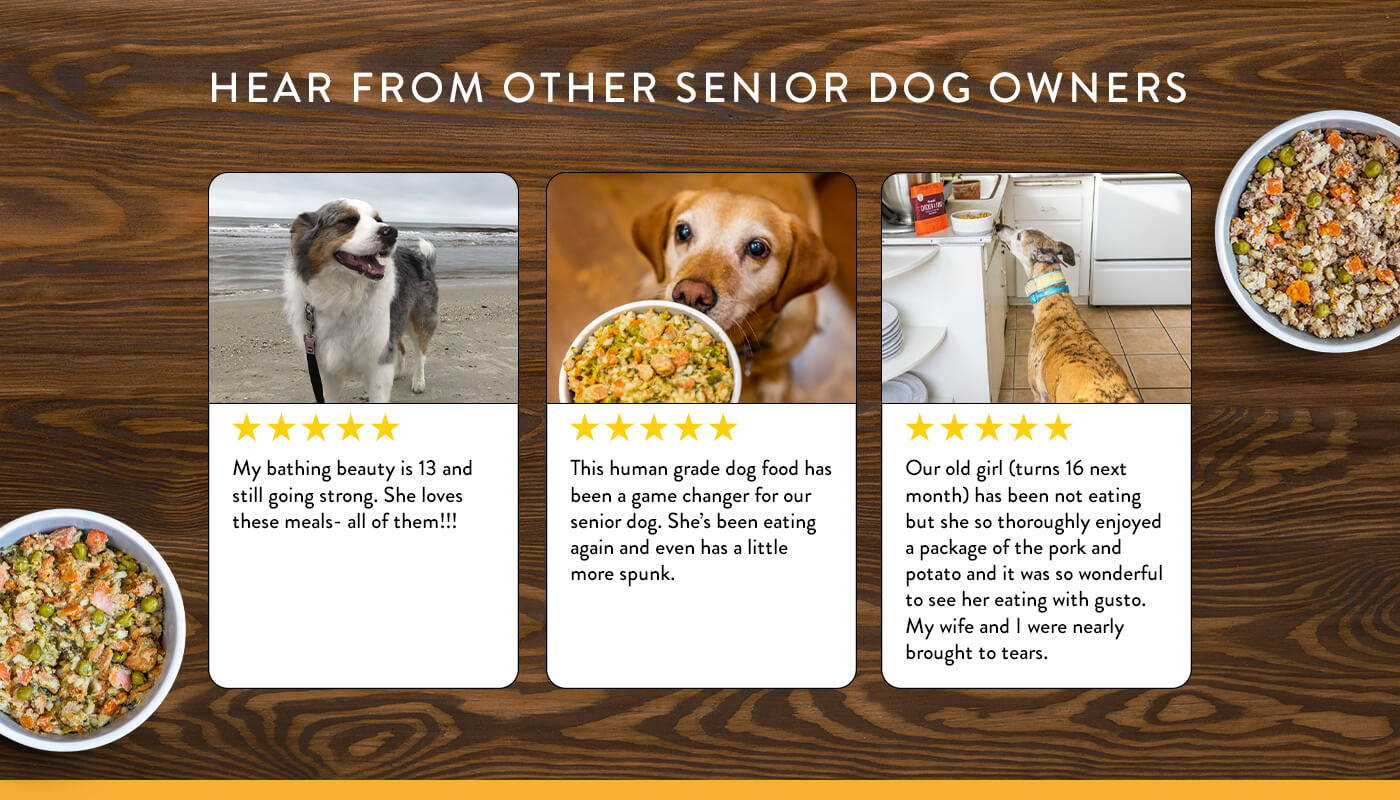A selection of five star reviews from owners of senior dogs who love Portland Pet Food.