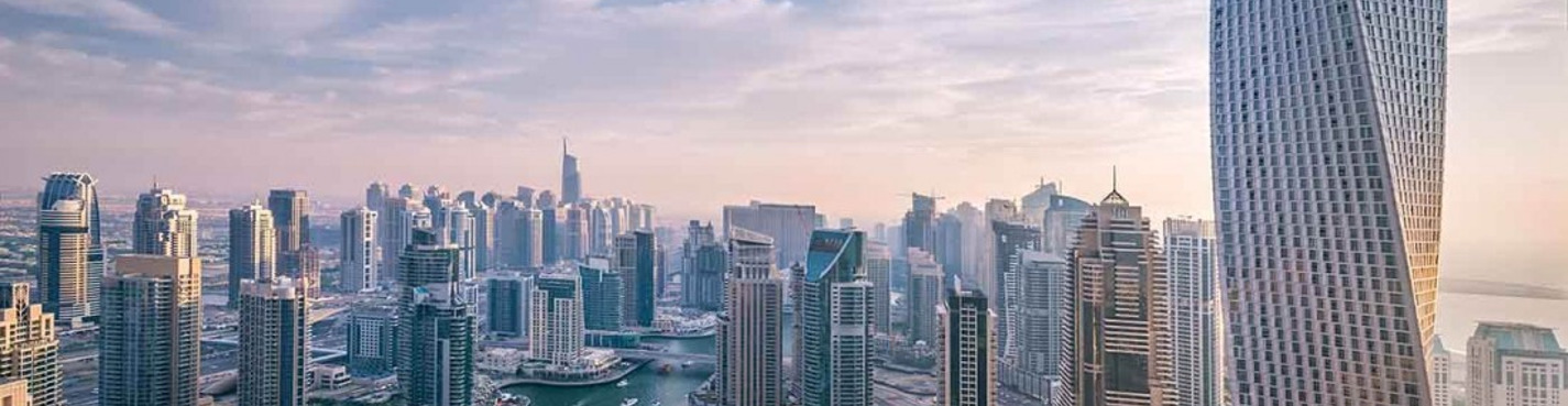 Обзорная по Дубаю с посещением Тропического леса (групповая автобусная)