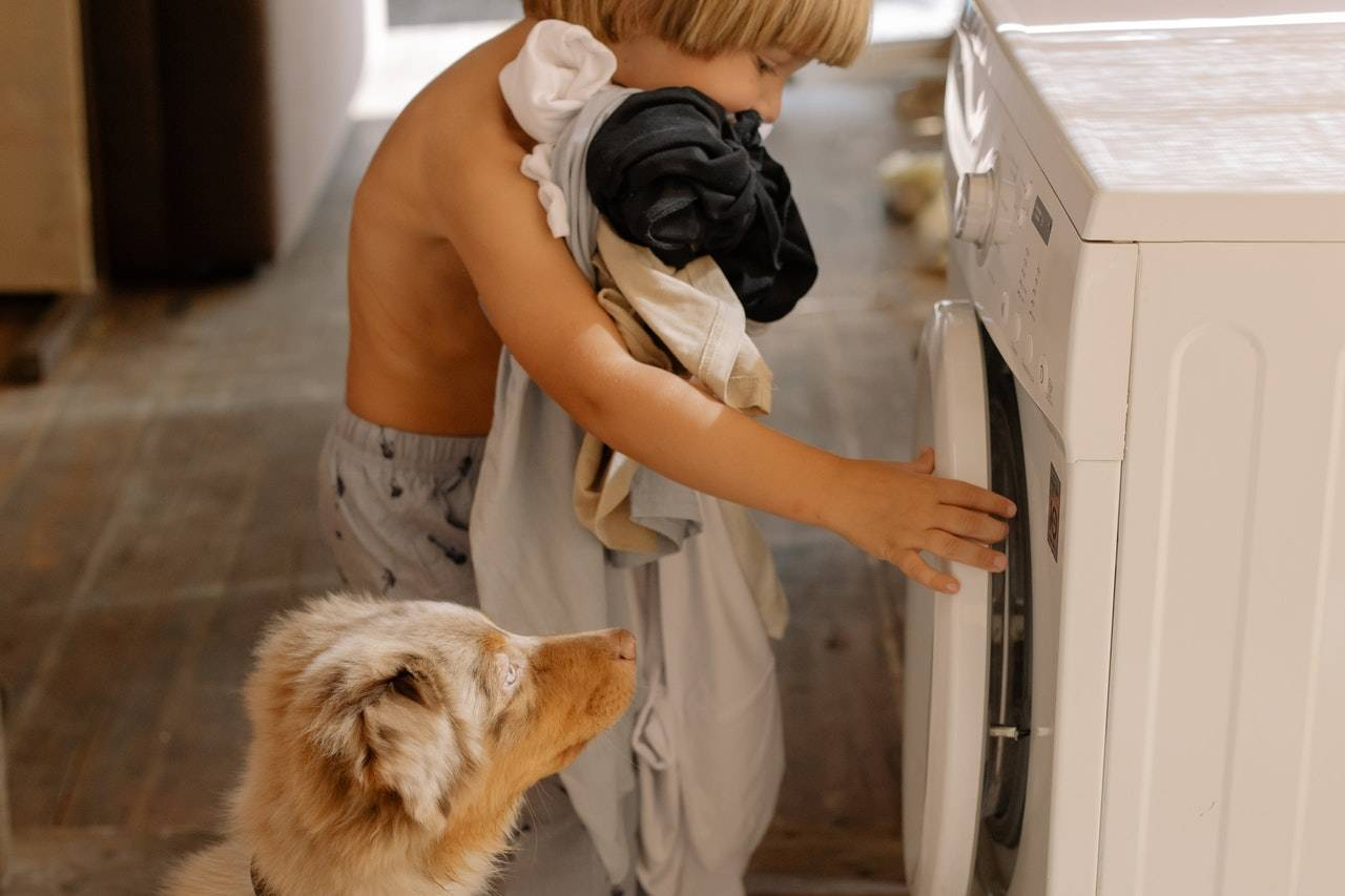 Little boy loading the laundry with his pet dog