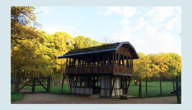 wildpark duennwald
