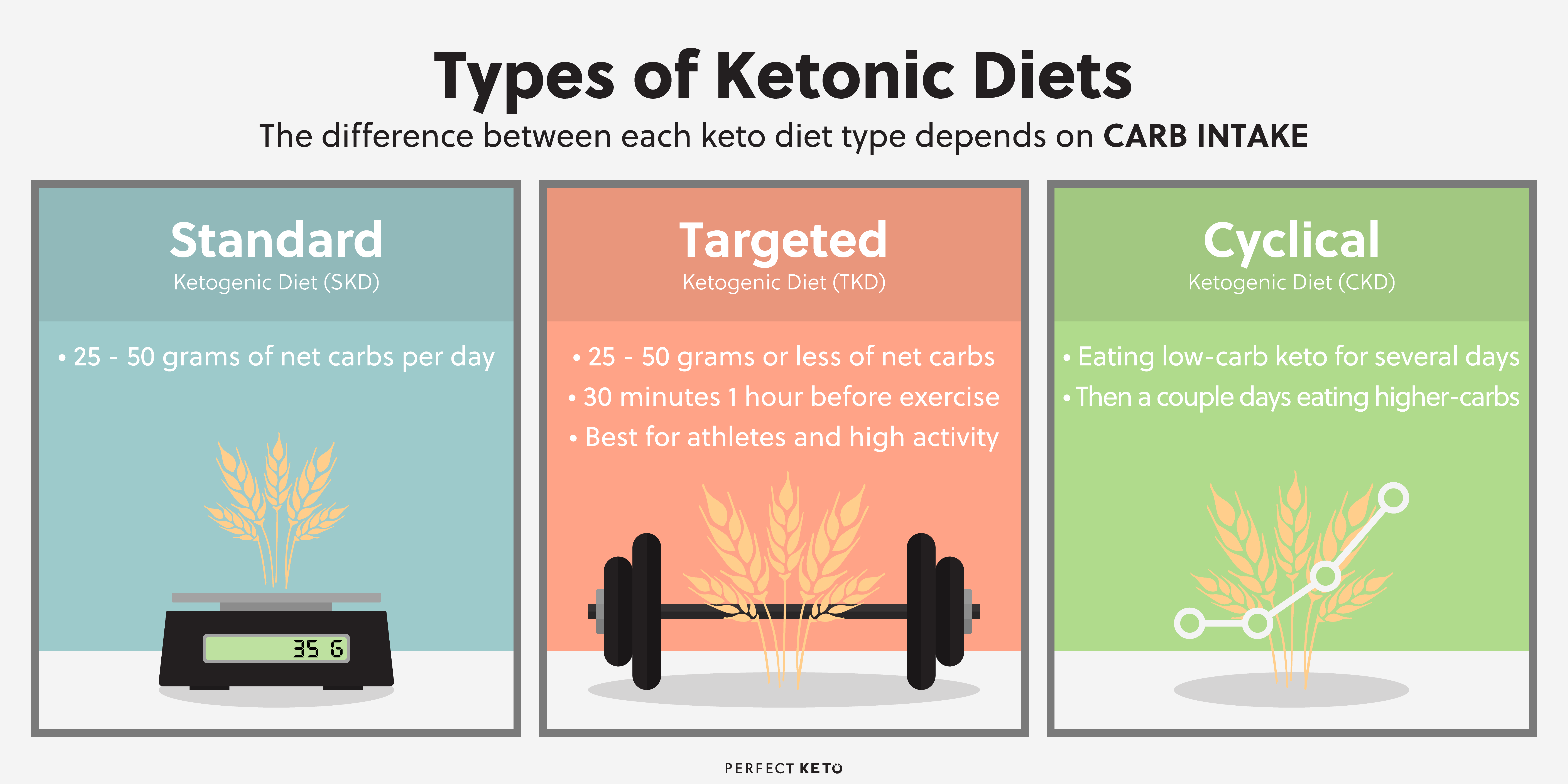 information supporting keto diet