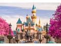 2 Hopper Passes Disneyland or California Adventure