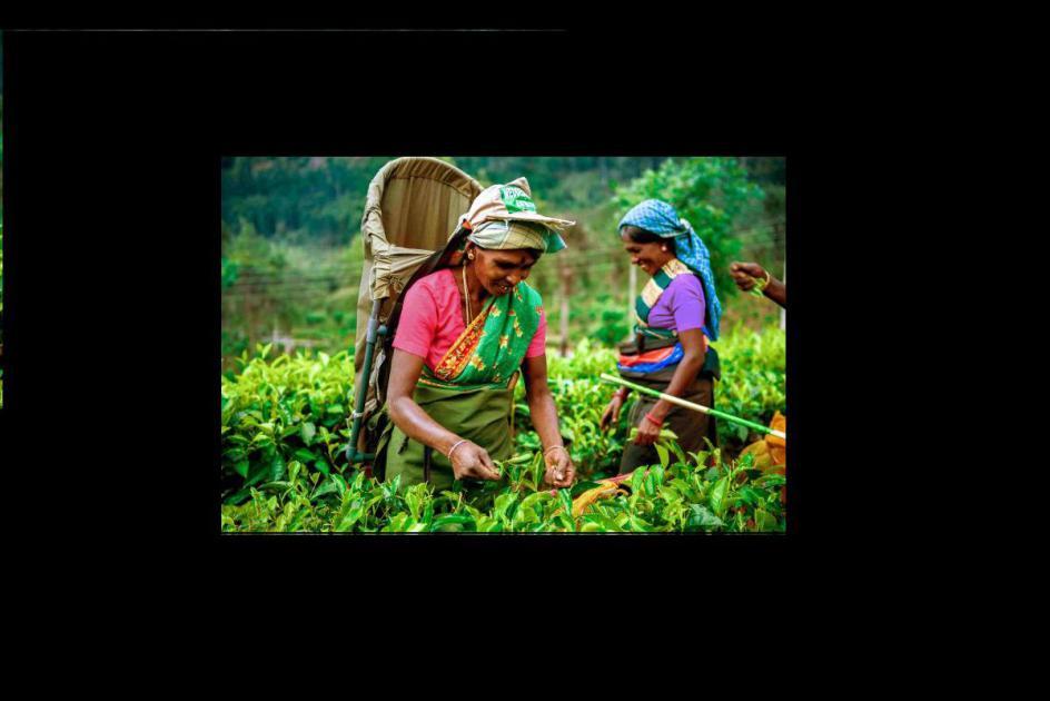 Sri Lanka Trek to Tackle Poverty