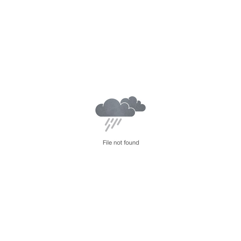 day tripper diaper backpack