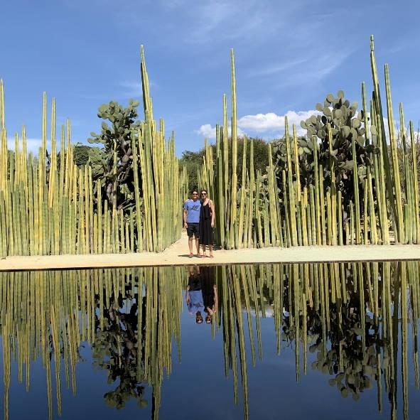 jardin Oaxaca