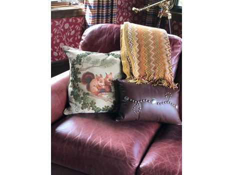 Throw, Leather Pillow, Squirrel Pillow