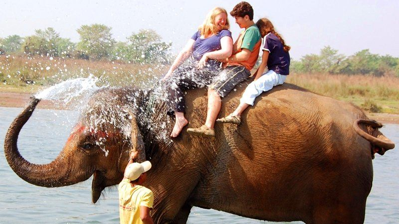 Elephant shower, Chitwan National Park, Nepal
