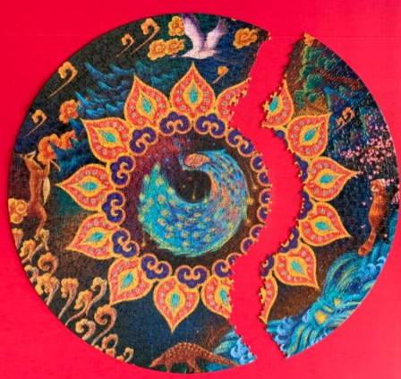 1000-piece-colored set-rainbow-round-puzzle-adult-kids-do-it-yourself-educational-toy-roundpuzzle-testimonial-7