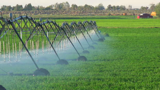 Irrigation, Food Waste and Water, PC: Shutterstock