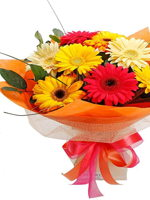 hf Special Mix Gerberas Bouquet