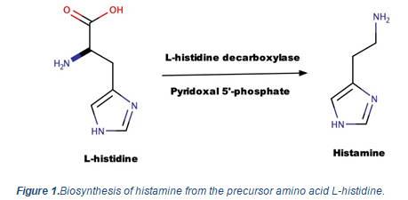 Low histamine food list