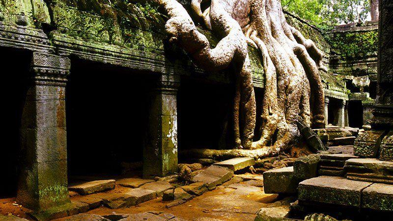 Ta Phrom, Angkor, Cambodia