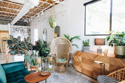an indoor space with natural lighting, wooden furniture, white walls, and plants