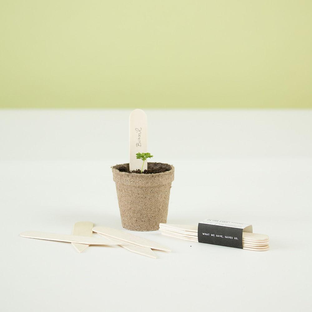 Thisispaper_Gardening-49a.jpg