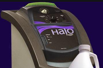 Halo disinfecting system primrose