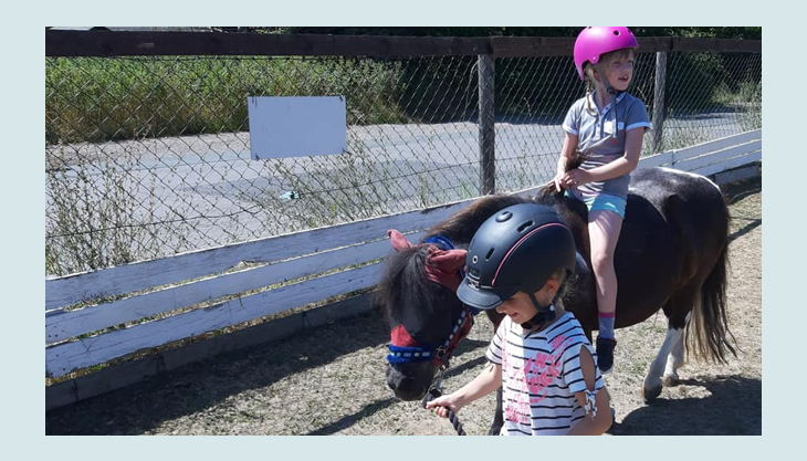 iris brosen pony mit kindern