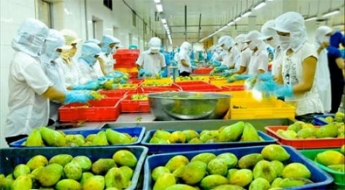 Fruit and vegetable exports decline during first quarter