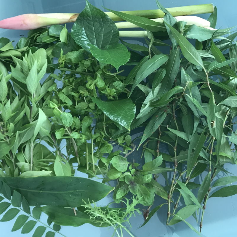 Herbs that went into my Nasi ulam. Lots of work slicing !