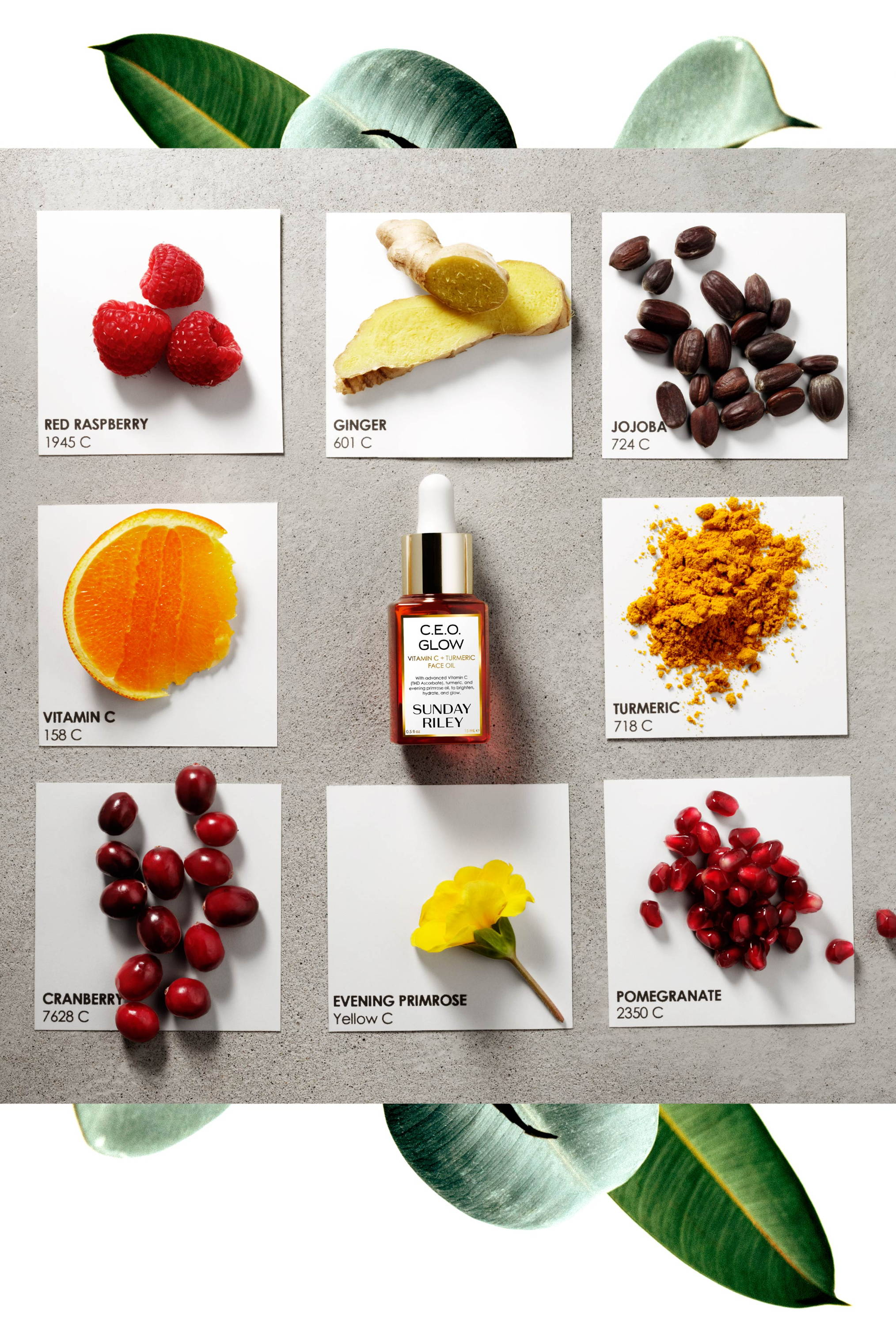 What's In Your Drop? Image of all the ingredients in the style of pan tone color layout; from the C.E.O. Glow Vitamin C and Turmeric Face Oil