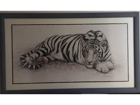 White Tiger in Blue Frame (38.5