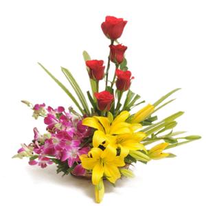 hf Beautiful Flowers Combination