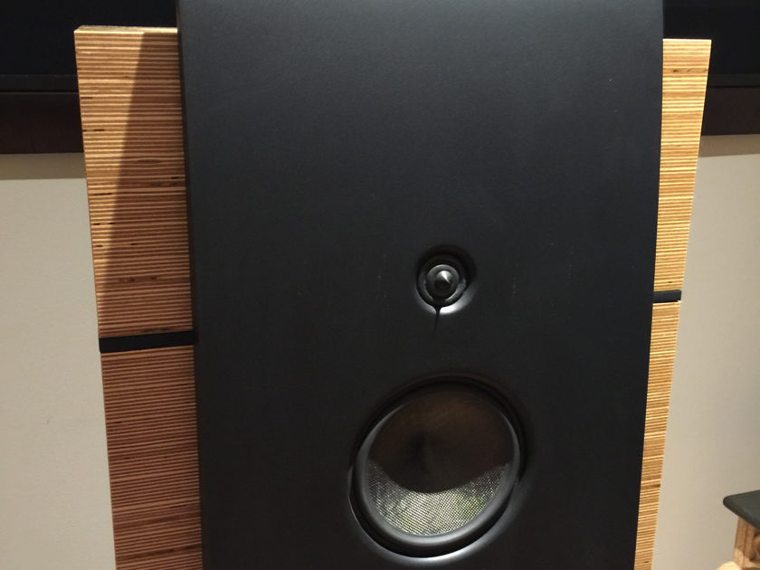 Magico M5 World Class Speakers. PRICED TO SELL - Relocating overseas.