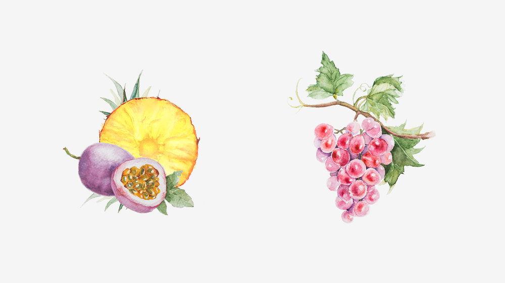 water_color_fruit-03.jpg