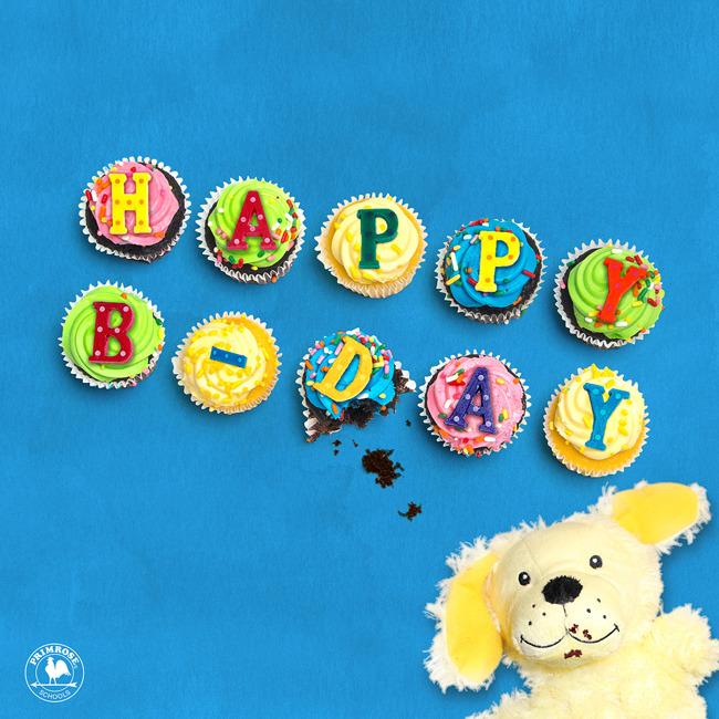 Erwin the dog eating Happy Birthday cupcakes