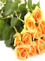 hf Yellow Roses Bouquet