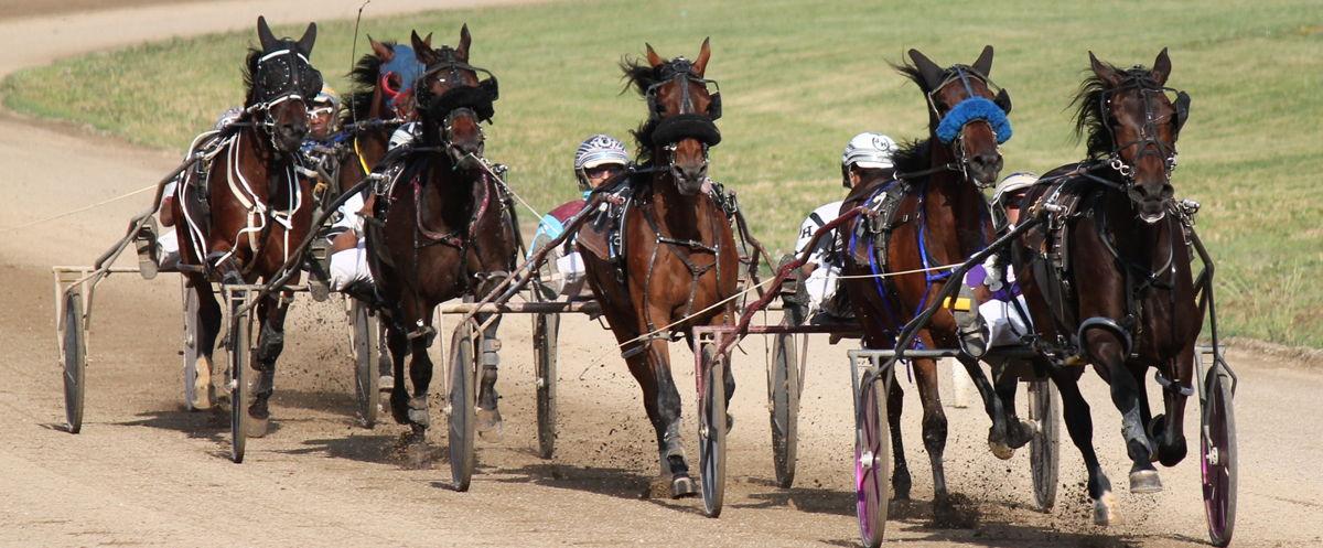 Ohio Harness Horsemen's Association