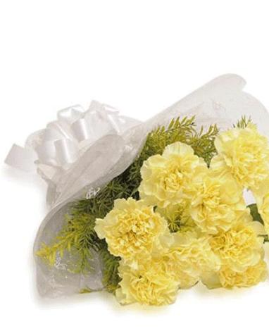 HF Yellow Carnation Flowers
