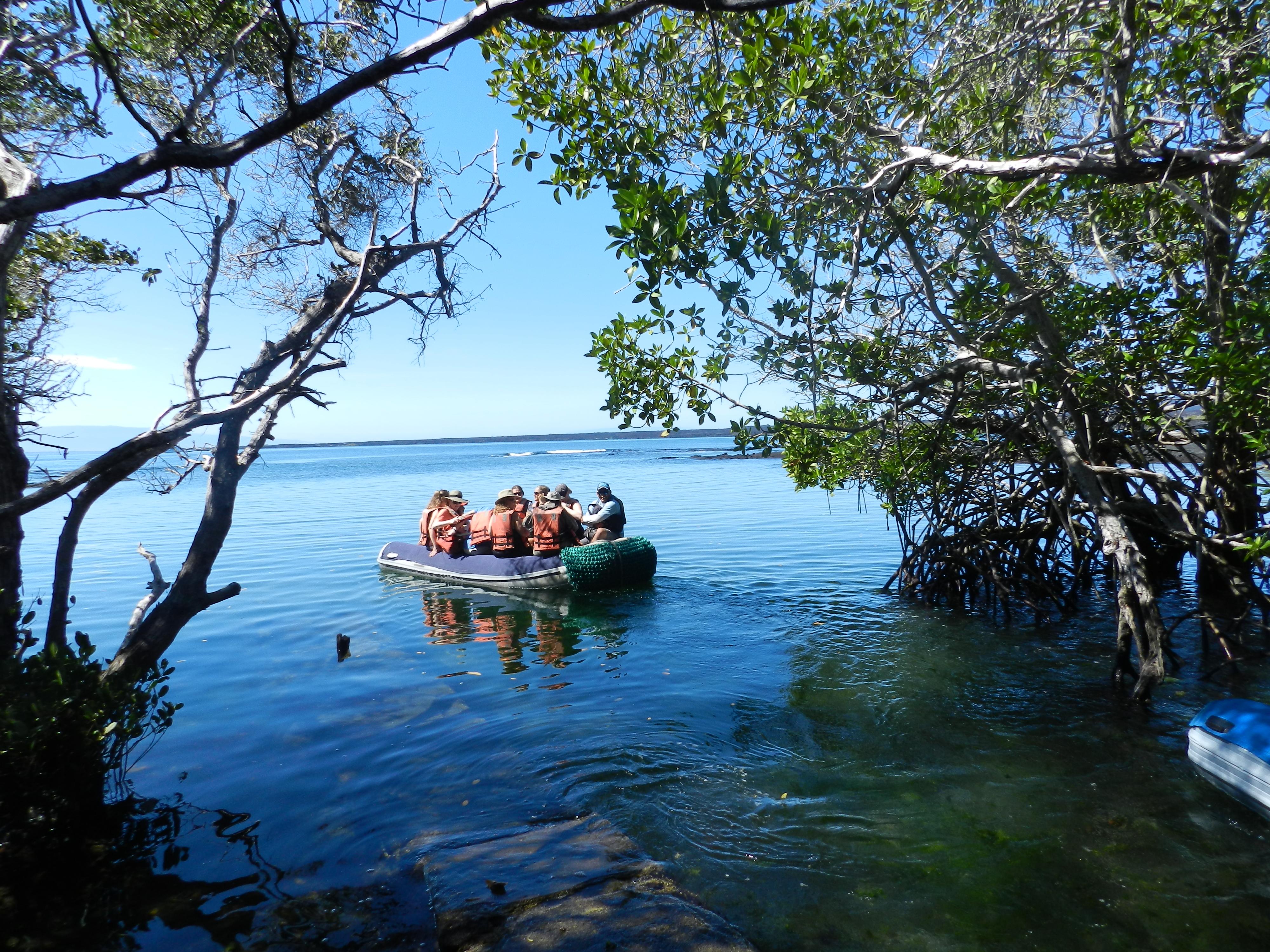 Punta Espinoza, Fernandina (20).JPG