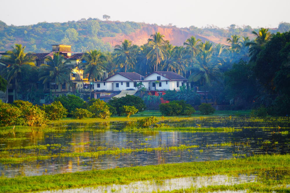 Image result for goa india