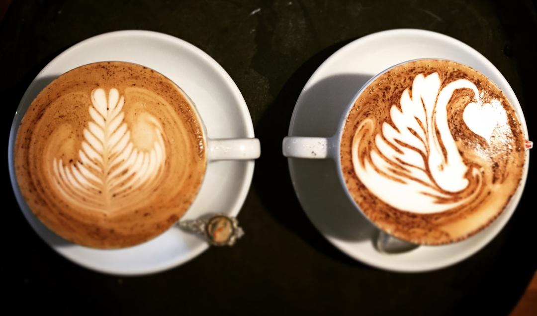 Fine Grind Espresso Bar Best Coffee Guide
