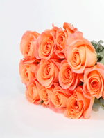 hf Dozen Orange Roses