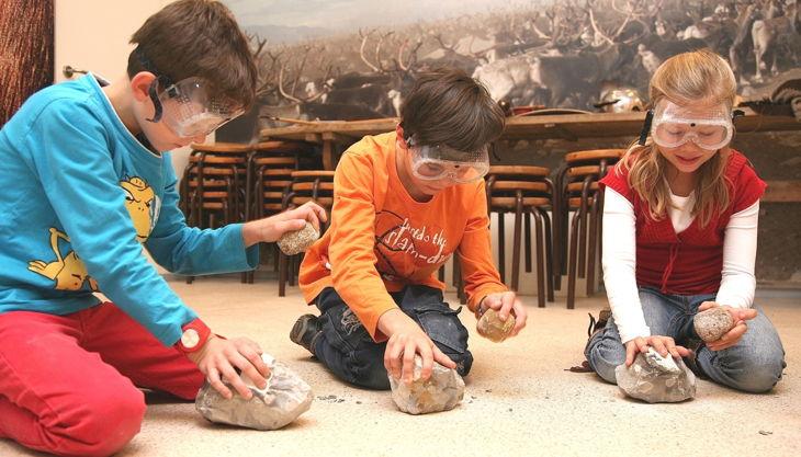 archäologisches museum hamburg zurück in die altsteinzeit