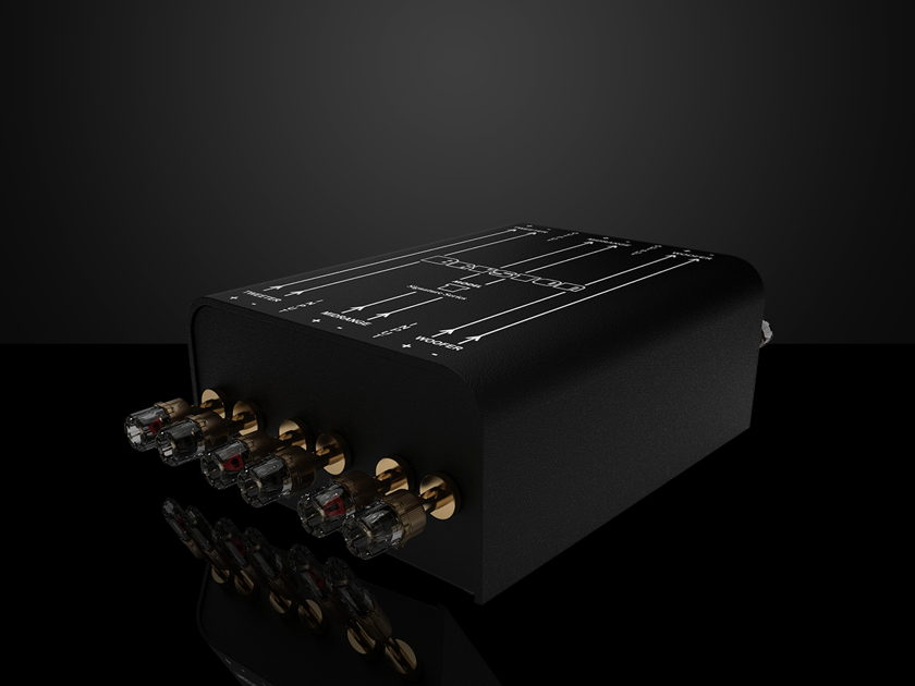 Bryston Model T Signature Black Ash Wood With Outriggers - Dynamic And Accurate Full Range Sound!