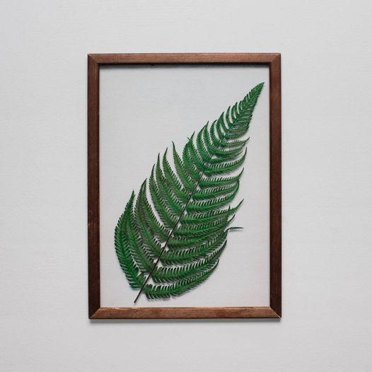 Картина с листом папоротника на прозрачной подложке