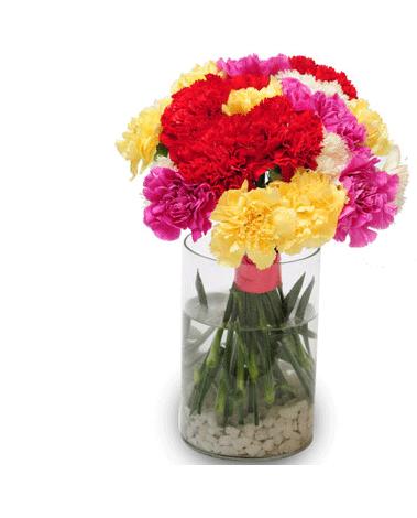 HF Mix Carnation Bouquet