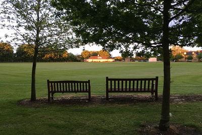 Oxford Downs Cricket Club Logo