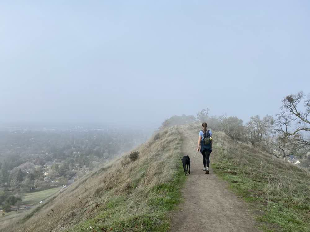 Woman hiking with her dog in the east bay at Shell Ridge Open Space