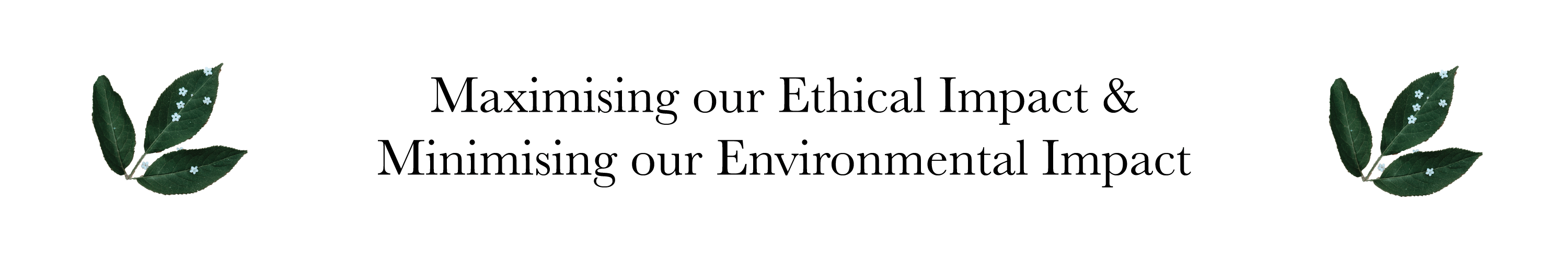 Maximising our ethical impact and minimising our environmental impact