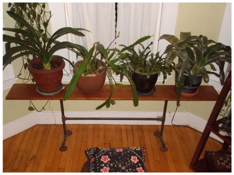 Handcrafted Plant Table