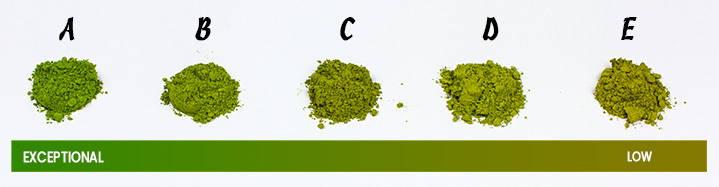 Comparison of Matcha powder grades from ceremonial grade A to culinary grade E