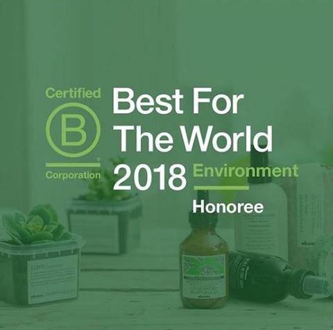 Best For The World 2018 Logo