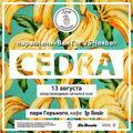 Cedra_art