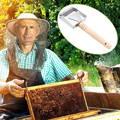 Grattoir pour désoperculation du miel