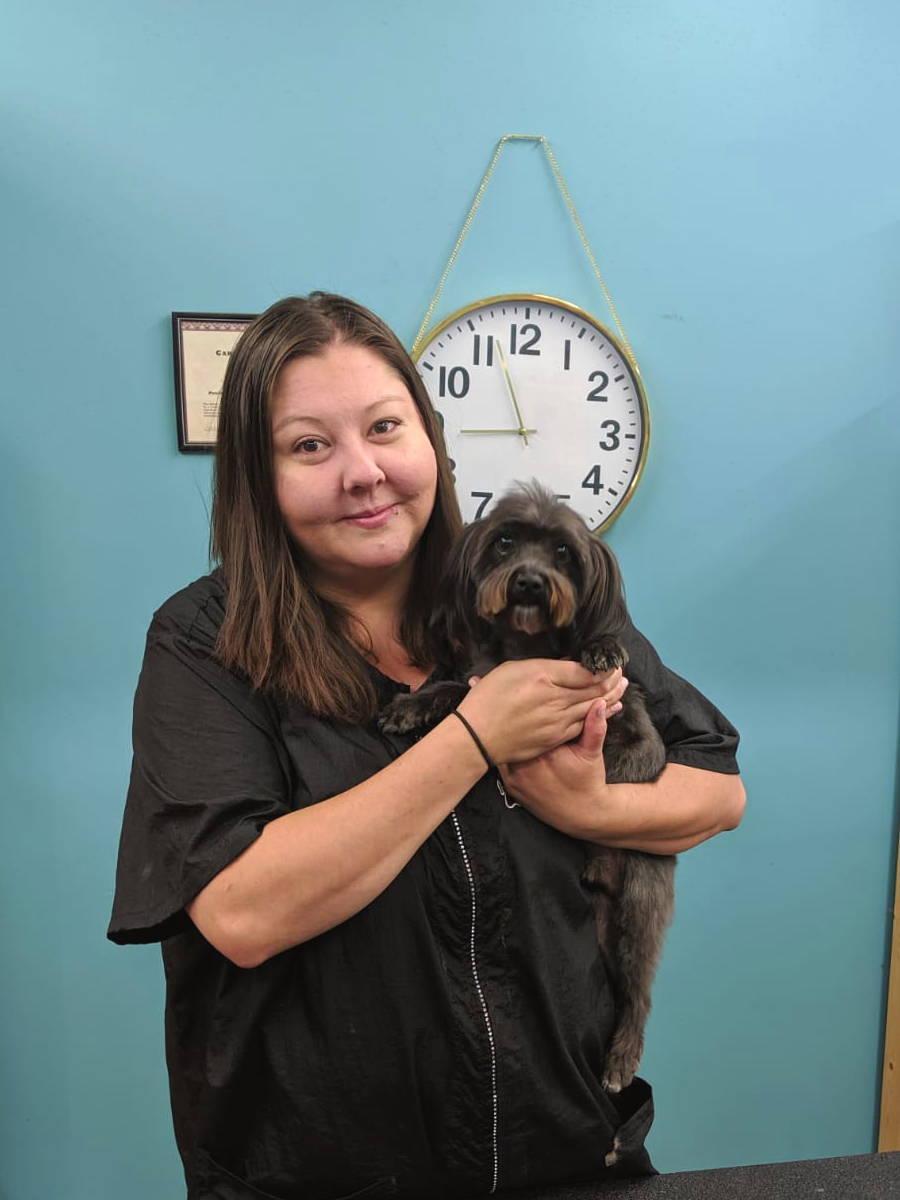 Social Pets Dog Groomer