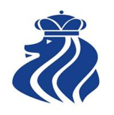 St Albans Cricket Club Logo